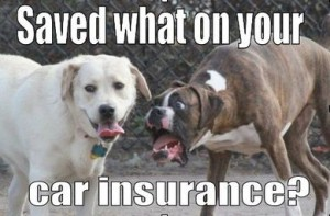 Post image for Saving On Your Car Insurance Quote